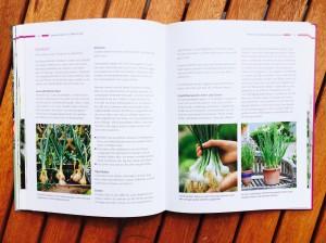 "Pflanzen-Lexikon im Buch ""Der Selbstversorger-Balkon"""