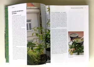 """Eine Doppelseite aus dem Buch """"Bio-Gärtnern auf dem Fensterbrett"""" mit Gründen für das Gärtnern am Fenster"""